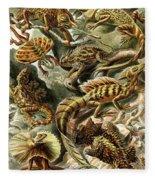 Lizards Lizards And More Lizards Fleece Blanket