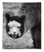 Llama Fleece Blanket