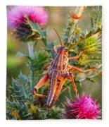Locust And Thistle 2am-110423 Fleece Blanket