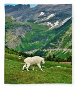 Logan Pass Mountain Goat Fleece Blanket