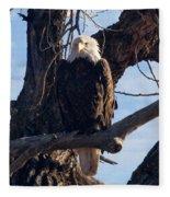 Lone Eagle Fleece Blanket
