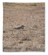 Lone Killdeer Fleece Blanket