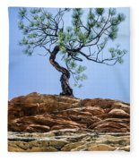 Lone Pine Fleece Blanket