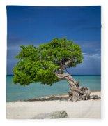 Lone Tree - Aruba Fleece Blanket