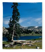 Lone Tree At Pass Fleece Blanket