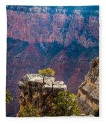 Lone Tree On Outcrop Grand Canyon Fleece Blanket