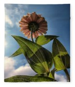 Lone Zinnia 01 Fleece Blanket