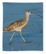 Long-billed Curlew Fleece Blanket