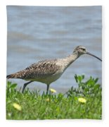 Long Billed Curlew At Palacios Bay Tx Fleece Blanket