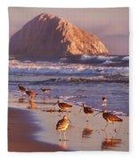 Long Billed Curlew - Morro Rock Fleece Blanket