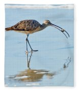 Long-billed Curlew With Crab Fleece Blanket