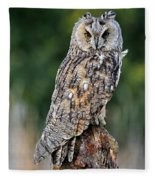 Long-eared Owl 4 Fleece Blanket