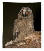 Long-eared Owl Asio Otus Fleece Blanket