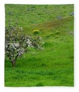 Long Forgotten Fleece Blanket