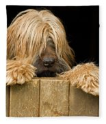 Long-haired Dog Fleece Blanket