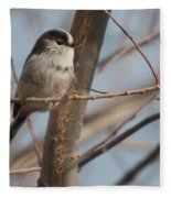 Long-tailed Tit Perched On Twig Fleece Blanket