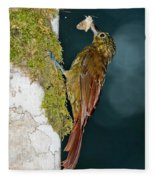 Long-tailed Woodcreeper Fleece Blanket