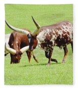 Longhorn Cattle Fleece Blanket