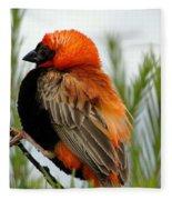 Lonley Bird Fleece Blanket
