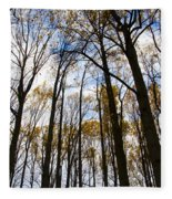 Looking Skyward Into Autumn Trees Fleece Blanket