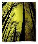 Looking Through The Naked Trees  Fleece Blanket