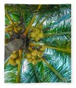 Looking Up A Coconut Tree Fleece Blanket