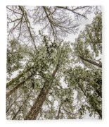 Looking Up At Snow Covered Tree Tops Fleece Blanket