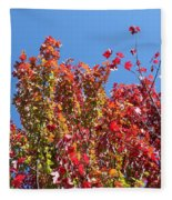 Looking Upward Fleece Blanket
