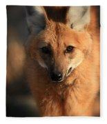 Looks Like A Fox Fleece Blanket