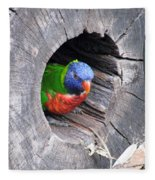 Lorikeet - Peek-a-boo Fleece Blanket