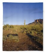 Lost Dutchman Park Supestition Mountains Fleece Blanket