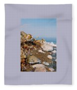 Lot's Wife Fleece Blanket