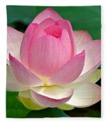 Lotus 7152010 Fleece Blanket