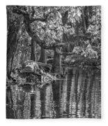 Louisiana Bayou - Bw Fleece Blanket