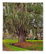 Louisiana Country Fleece Blanket