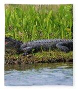 Louisiana Gator Fleece Blanket