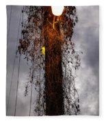 Louisiana Light Post Fleece Blanket