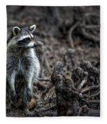 Louisiana Raccoon Fleece Blanket