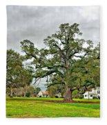 Louisiana Winter 2 Fleece Blanket