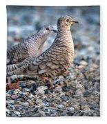 Love Peck Fleece Blanket