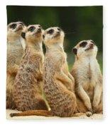 Lovely Group Of Meerkats Fleece Blanket