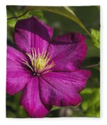 Lovely Magenta Pink Clematis Blossom Fleece Blanket