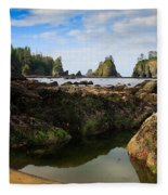 Low Tide At The Arches Fleece Blanket