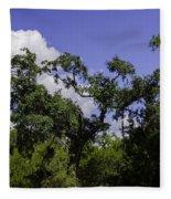 Lowcountry Life Oaks Fleece Blanket