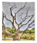 Lowcountry Marsh On Sea Island Fleece Blanket