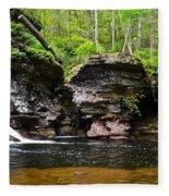 Lower Adams Falls Fleece Blanket