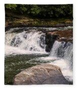 Lower Swallow Falls 2 Fleece Blanket