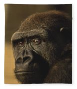 Lowland Gorilla Fleece Blanket