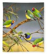 Lucky Seven - Gouldian Finches Fleece Blanket