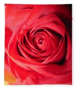 Luminous Red Rose 7 Fleece Blanket